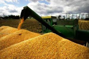агропредприятия и урожай
